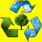 Recycling and Green Friendly Cedar Clearing Services